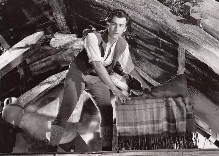 Stewart Granger in Captain Boycott (1947)