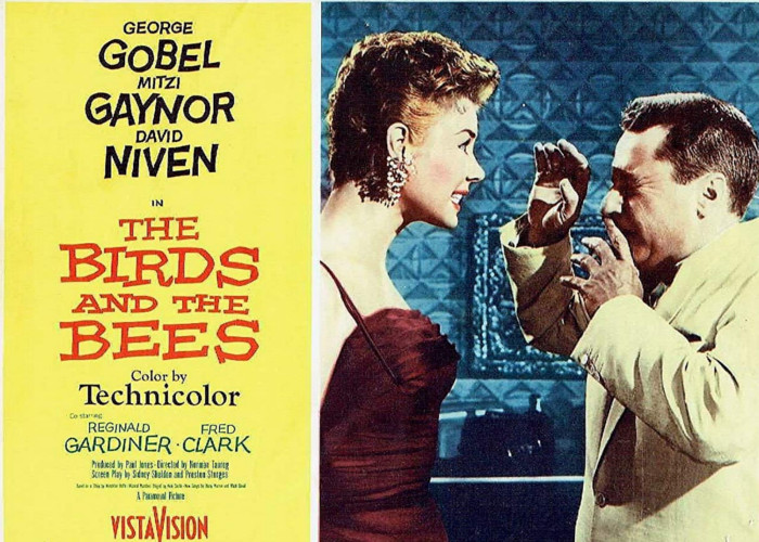 Mitzi Gaynor and George Gobel in The Birds and the Bees (1956)